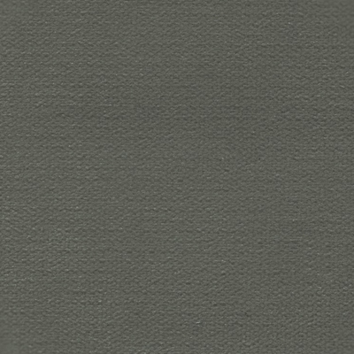 Haute House Fabric - George Flannel - Velvet Solid #4235